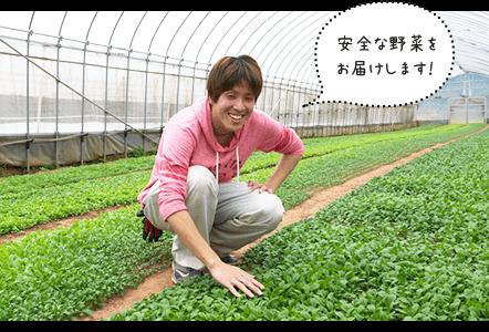安全な野菜をお届けします!